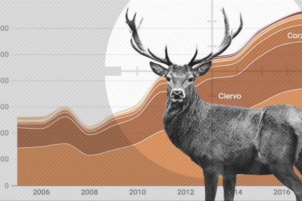 Los cazadores matan casi el triple de hace diez años