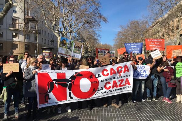 Ong ADDA se adhiere un año más a la convocatoria No a la Caza