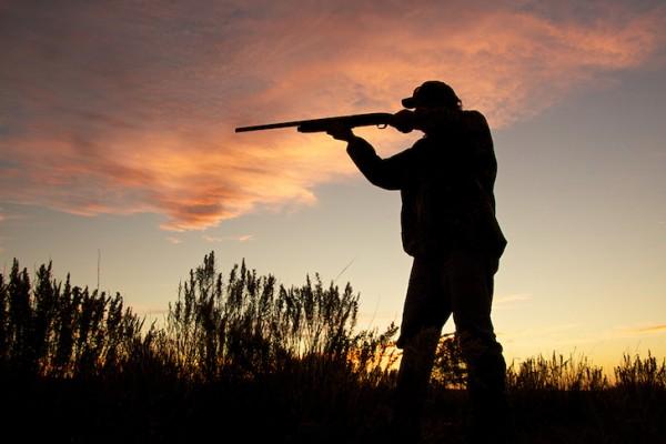 Els escopeters al marge de la llei (Los pistoleros al margen de la ley)