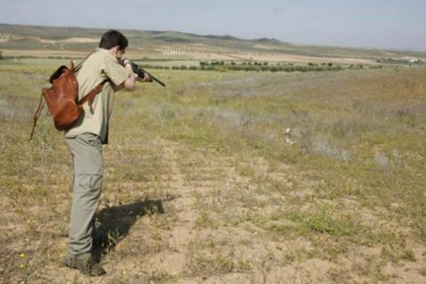 """Castilla-La Mancha """"anima"""" a matar a conejos durante el confinamiento por el Covid19"""